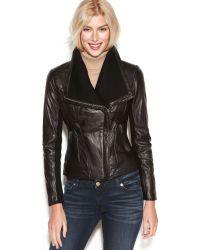 Michael Kors Leather Knit Trim Motorcycle Jacket - Lyst