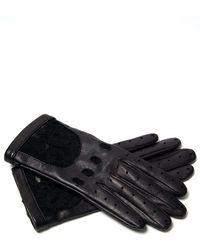 Nina Ricci - Lace Cutout Gloves - Lyst