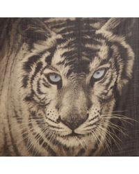 Ananda Design Tiger Wrap - Lyst