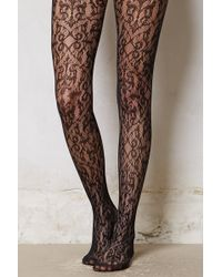 Eloise - Vineyard Sheer Tights - Lyst