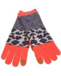 Marc By Marc Jacobs Leopard Gloves - Lyst