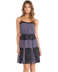 BCBGeneration Lace Cami Dress - Lyst