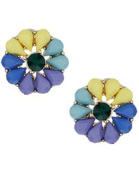 Topshop  Multi Coloured Flower Studs  - Lyst