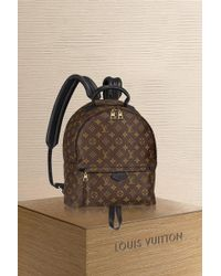 Louis Vuitton - Palm Springs Backpack Mm - Lyst