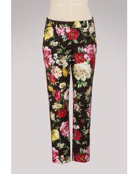 Dolce & Gabbana - Flowers Print Trousers - Lyst