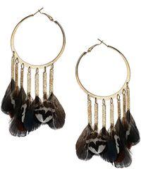 Topshop Feather Hoop Earrings  Brown - Lyst