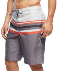 Calvin Klein Gradual Striped E-Board Swim Trunks gray - Lyst