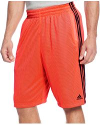 Adidas Basketball Shorts Triple Up Mesh Basketball Shorts - Lyst
