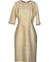Dolce & Gabbana Gold Knee-length Dress - Lyst