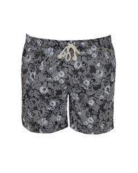 Orphn Gray Flowers Shorts - Lyst