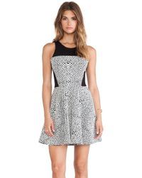 Parker Ramona Combo Dress - Lyst