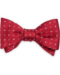 Brooks Brothers Flower And Pine Bow Tie - Lyst