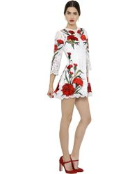 Dolce & Gabbana Floral Embroidered Cordonetto Lace Dress - Lyst