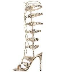 Topshop Roxanne Gladiator Sandals beige - Lyst