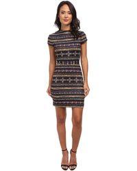 Nicole Miller Short Sleeve Gilded Stripe-neoprene Dress - Lyst