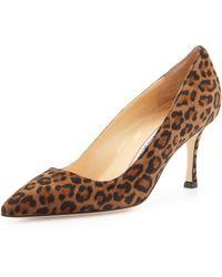 Manolo Blahnik Bb Leopard-print Suede Pointy Pump - Lyst