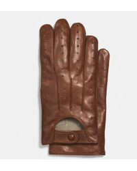Coach Leather Driving Glove - Lyst