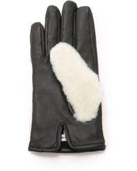 Carven - Teddy Gloves - Lyst