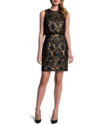 Cynthia Steffe Sleeveless Metallic Floral Popover Sheath Dress - Lyst