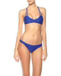 Mikoh Swimwear Electric Eel Banyans Bikini Top blue - Lyst