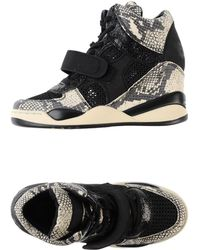 Ash Beige High-tops  Trainers - Lyst