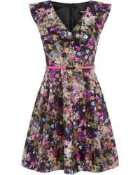 Oasis Annabel Skater Dress multicolor - Lyst