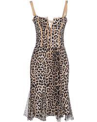 Love Sex Money Collection - Knee-Length Dress - Lyst