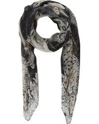 Swash Wild Things Arctic Scarf - Lyst
