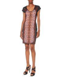 Just Cavalli Leopard-print Ponte Dress - Lyst