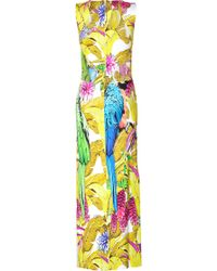 Just Cavalli Parrot Print Dress - Lyst