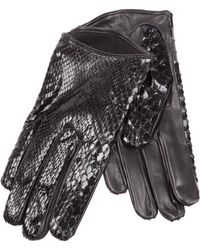 Imoni | Snakeskin Print Gloves | Lyst