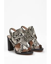 French Connection Toni Snake Print Leather Sandals - Lyst