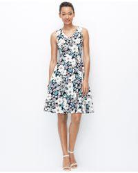 Ann Taylor Petite Sketched Floral Full Skirt Dress blue - Lyst