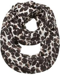 Nine West - Leopard Print Scarf - Lyst