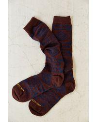 Pendleton - X Uo Knee High Boot Sock - Lyst