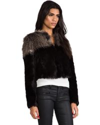 Twelfth Street Cynthia Vincent - Two Tone Chubby Faux Fur Pullover in Black - Lyst