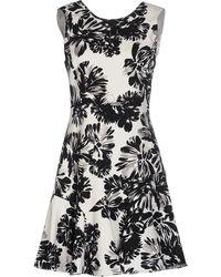 Rebecca Taylor - Splashy Flower Print Dress - Black/White - Lyst