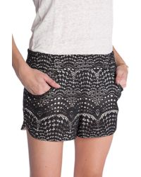 Twelfth Street by Cynthia Vincent Gym Printed Shorts - Lyst