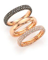 Michael Kors Black Out Pavé Band Ring Set pink - Lyst