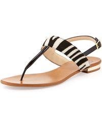 Dee Keller - Toni Pony Hair Flat Thong Sandal Zebra - Lyst