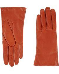P.A.R.O.S.H. | Gloves | Lyst