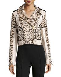 Diane Von Furstenberg Theodora Cheetah-print Jacket with Trim - Lyst