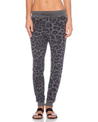 Splendid Distressed Leopard Pant - Lyst