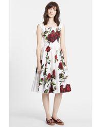 Dolce & Gabbana Rose-Print Cotton Dress green - Lyst
