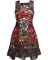 Peter Pilotto Floral Lace Printed Dress - Lyst