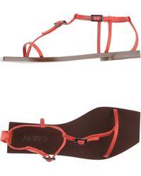 Acne Studios Thong Sandal red - Lyst