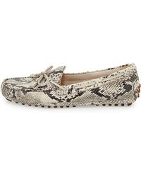 Cole Haan Grant Snake Print Leather Driver - Lyst