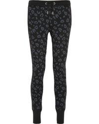 Zoe Karssen Leopard-Print Cotton-Blend Jersey Track Pants - Lyst