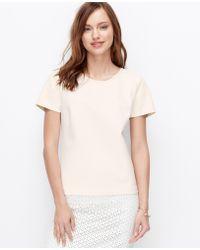 Ann Taylor Petite Faux Leather Sleeve Lace Trim Top - Lyst