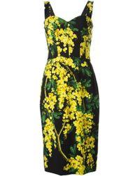 Dolce & Gabbana Acacia Print Dress multicolor - Lyst